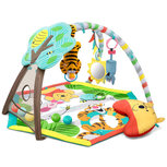 Bright Starts Winnie the Pooh Happy as Can Bee Speelkleed